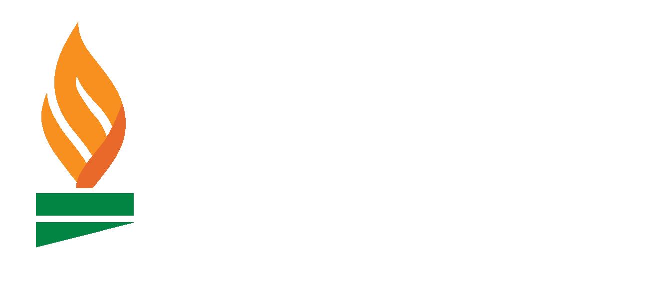 The Sheth Foundation Logo