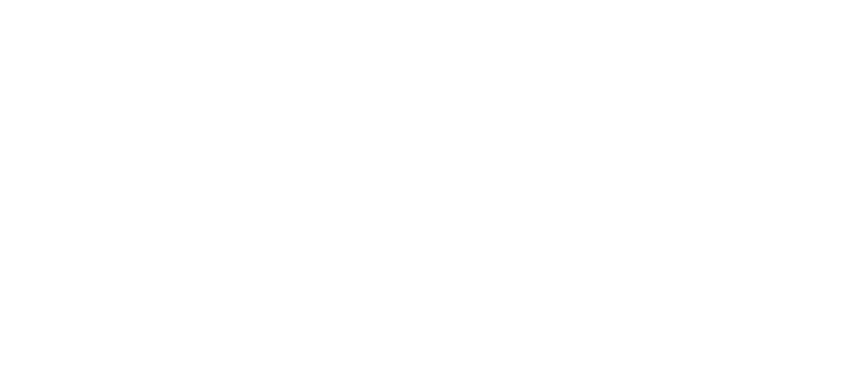 Sheth Foundation Logo White
